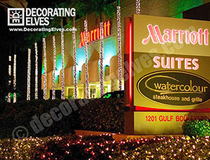 Commercial-Holiday-Lighting-Trunk-wrapped-Palms-with-minis-through-out-bushes-www.decoratingelves.com