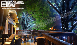 Tampa commercial outdoor lighting decorating elves deck lighting tree wrap lighting decoratingelves mozeypictures Gallery