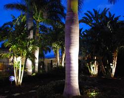 Silhouetting-Outdoor-Lighting