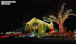 Whole-Yard-Holiday-Lighting-Display-www.decoratingelves.com