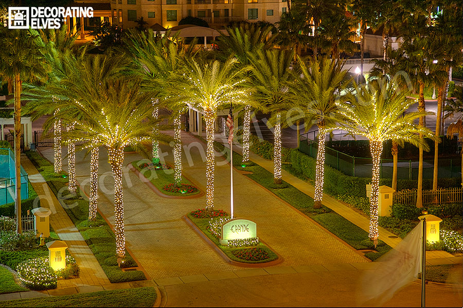 Holiday Lighting Services Tampa, St. Pete, Clearwater