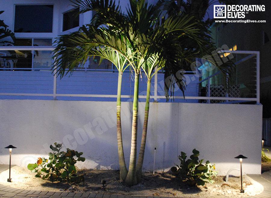 LED-Uplighting-on-palm,-path-lighting-on-pavers-www.decoratingelves.com