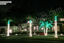 LED-Mini-Trunk-Wrap-Green-Knuckle-and-Fronds-Staked-lighting-outlining-beds-roof-outlined-www