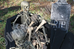 Coffin-with-Skeletons-and-Bones-Halloween-Display-www.decoratingelves.com