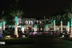 Club-House-holiday-lights-with-LEDs-wrapped-on-Palms-www.decoratingelves.com