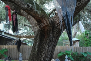 Halloween-Display-with-Hanging-Ghost-Tombstones-and-Skeletons-www.decoratingelves.com