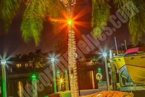 Uplighting-Palm-Hardscape-Lightng-Fountian-Lighting-www.decoratingelves.com